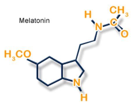 melatonina negli alimenti la melatonina a tavola nutrimenti