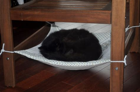 Chair Cat Hammock diy cat chair hammock petdiys