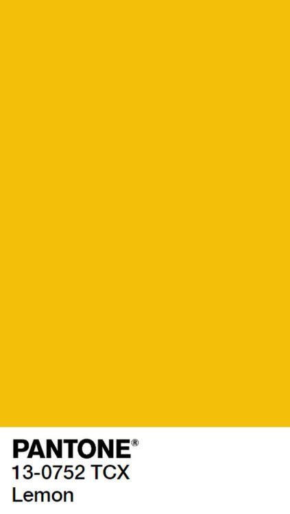 Peach Pantone by Pantone Yellow
