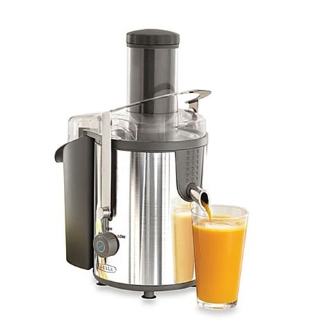 Power Juicer Innovation Store high power stainless steel juice extractor bed
