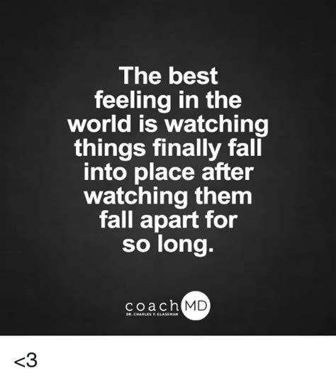 Fell Into Some Feelings Meme - the best feeling in the world is watching things finally