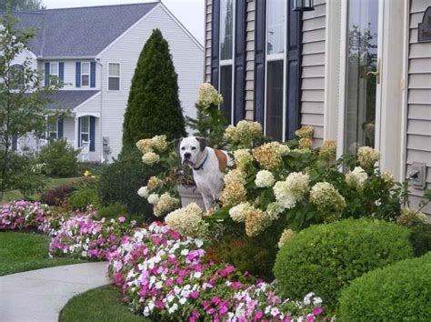 small front yard landscape ideas gardening landscaping small front yard landscape ideas