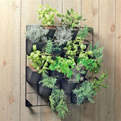 Vertical Wall Garden The Green Head Hanging Wall Herb Garden