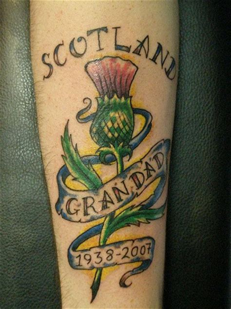 scottish thistle tattoo done heaven n hell tattoos