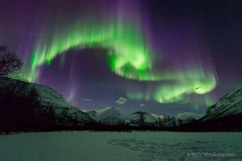 Best To See Northern Lights In Alaska On A Cruise