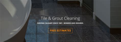 Cleaning Calgary by Carpet Cleaning Calgary 28 Images Carpet Cleaning