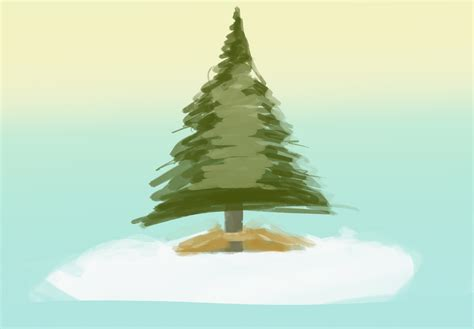 how to plant a living christmas tree 9 steps wikihow