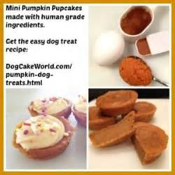 puppy cake recipe 10 best easy treat recipes images on crafts cake recipes and