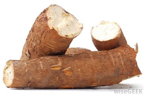 what is manioc flour with pictures