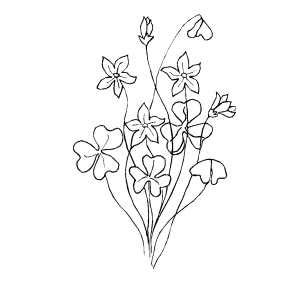 coloring pages of bunch of flowers bunch of flowers coloring sheet
