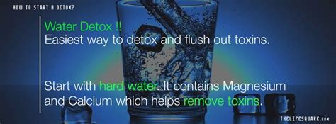 What Is The Detox Chemical That Starts With A V by How To Detox Cleanse A Guide To Detoxify Your And