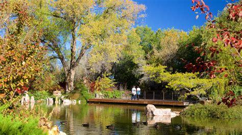 Albuquerque Aquarium And Botanical Gardens 20 Botanical Gardens With To Behold The Lettings