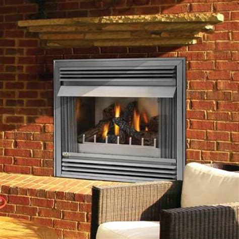 napoleon riverside 36 in outdoor gas fireplace insert gss36
