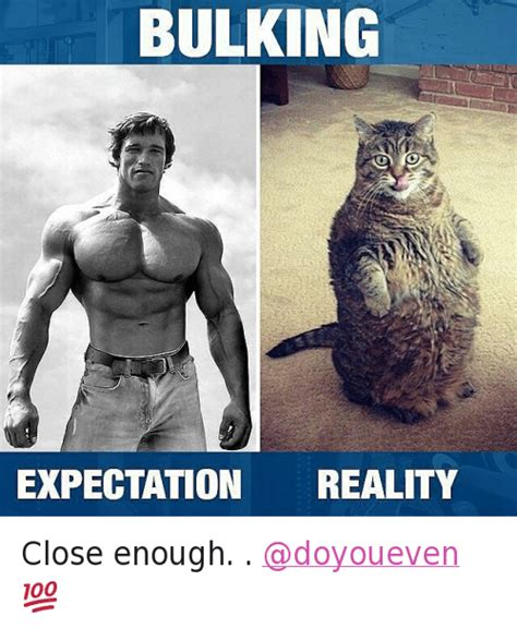 Arnold Gym Memes - bulking expectation reality close enough doyoueven