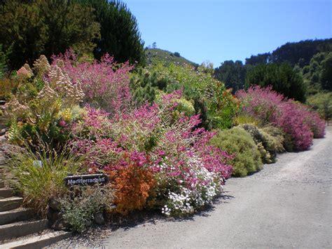 U C Botanical Garden At Berkeley 171 Alice S Garden Travel Buzz Berkeley Botanic Garden