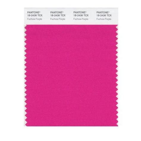 pantone color search pantone color fuchsia search and artists