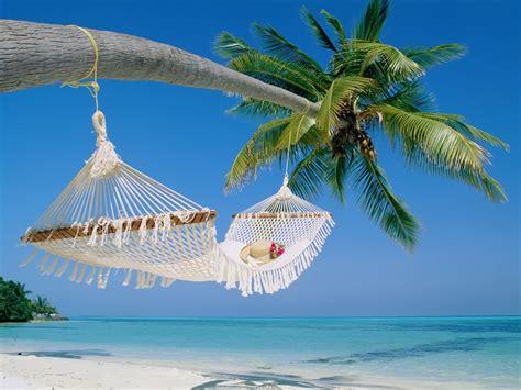 back to the beach download mp download besplatne pozadine 1024x768 viseća mreža za ležanje