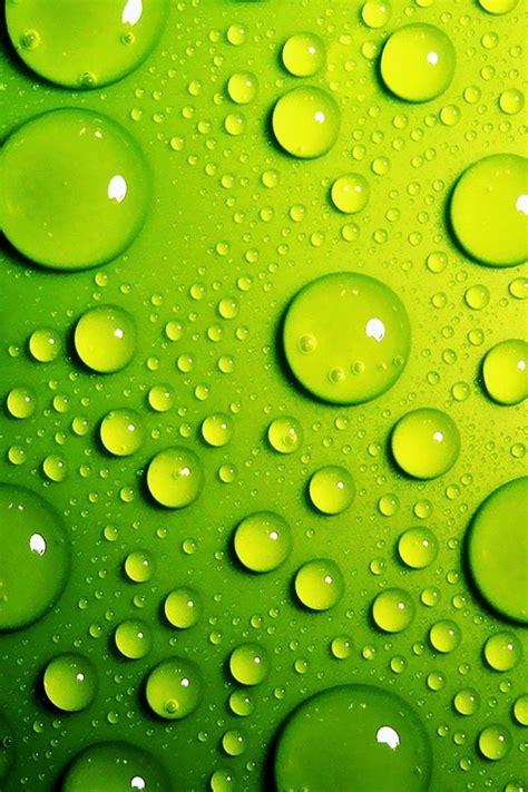 lime green bubbles iphone  wallpaper pocket walls