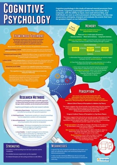 cognitive psychology psychology school poster cognitive psychology