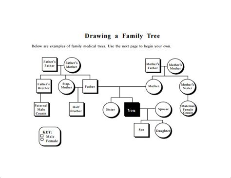 diagram of a family tree template family tree diagram template pdf