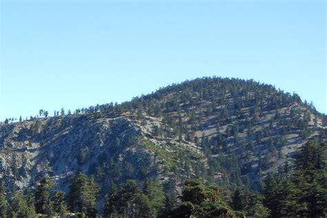 San Bernardino County Free Records Timber Mountain San Bernardino County California