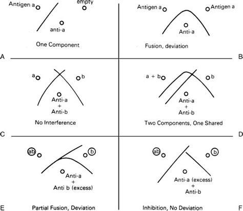 Xsl Identity Pattern | fundamental immunology