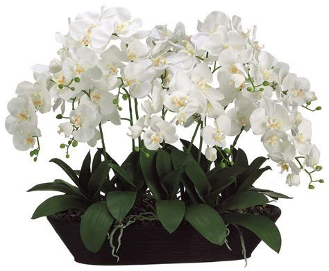 white phalaenopsis silk orchid floral design o131 white phalaenopsis orchid faux flower from inside stores