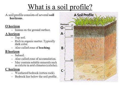 soil horizons diagram soil profile diagram for school www pixshark