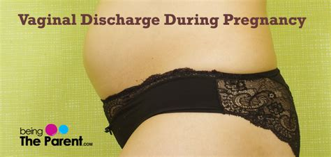 Discharge L by Yellow Discharge In Early Pregnancy Pregnancy