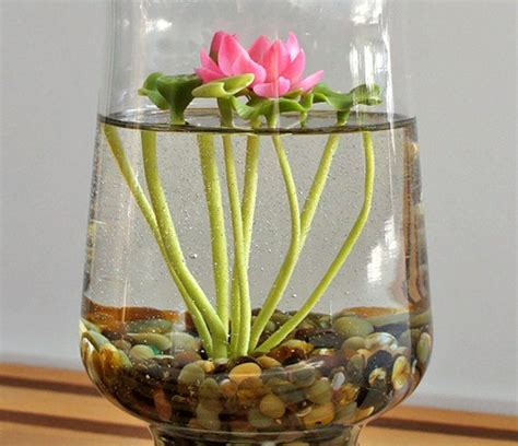 Aquatic Garden Vase by Reserved Tiny Pink Lotus Water Terrarium In Glass
