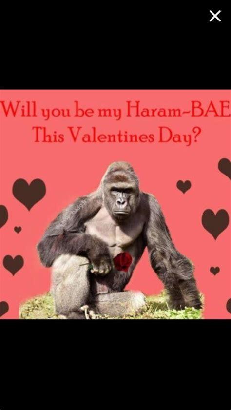 meme valentines cards ideas  pinterest