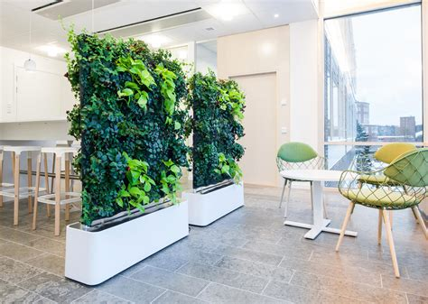 plant partition moving hedge space dividers from greenworks architonic