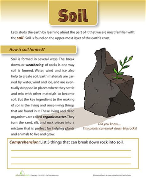 can you dig it rocks and soil printable workbook