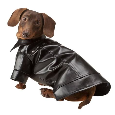 leather jacket for dogs leather jacket