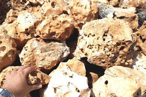 rocce da giardino prezzi rocce da giardino della murgia michele cioffi figli s