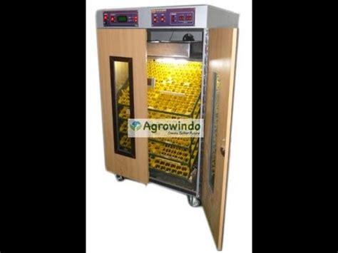 Mesin Tetas Telur Ayam Semi Otomatis mesin penetas telur ayam semi otomatis doovi