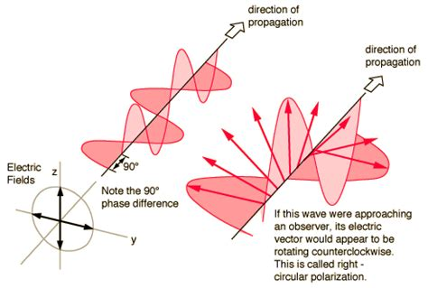 what does polarized light what does it when we say light is circularly or