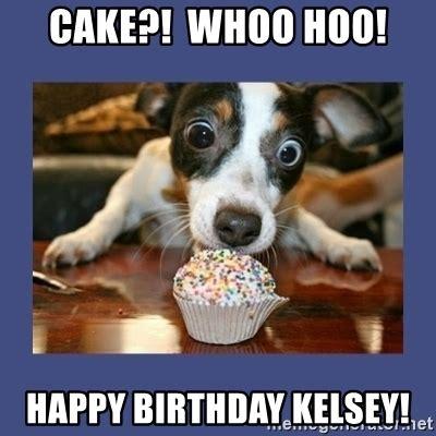 Birthday Cake Dog Meme - cake whoo hoo happy birthday kelsey excited dog