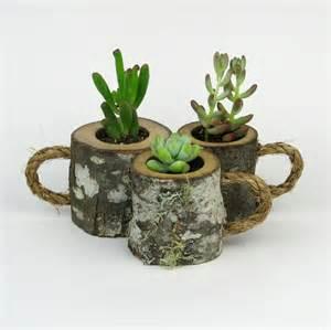 3 rustic succulent planters coffee mugs log planter cactus