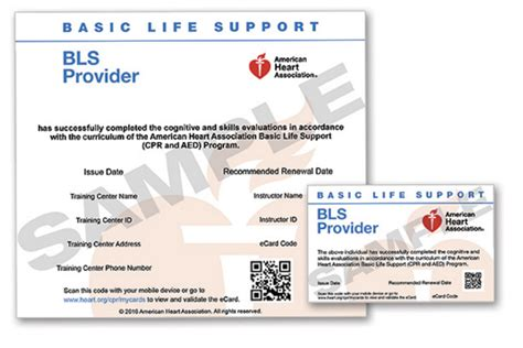 ahainstructornetwork pdf card template best cpr aed bls with ecards classes choose cpr bls