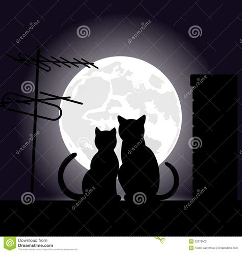 House Design Plan by Cats On A Night Roof Stock Vector Image 52379902