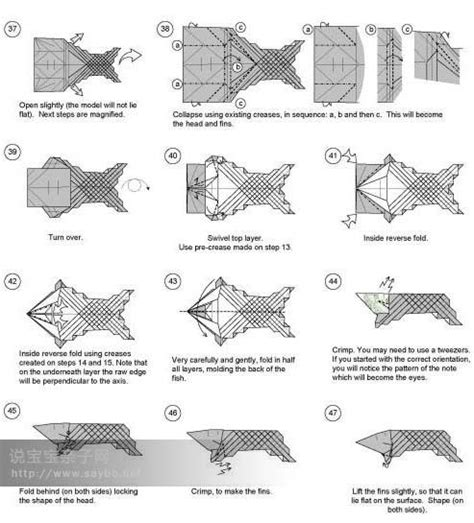 Origami Koi Diagram - 87 best images about origami on dollar bills