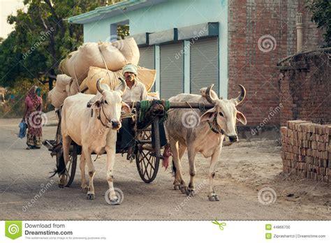indian cart indian bullock cart or ox cart editorial image image