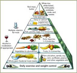 What Is A Mediterranean Style Diet - personal paradigm shifts connecting dots to god