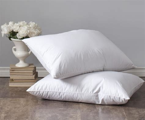 Couette Duvet Oie by Couette Duvet Oie Couette Duvet Oie With Couette