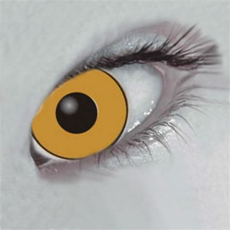 gold colored contacts gold colored contacts gold colored contact lenses