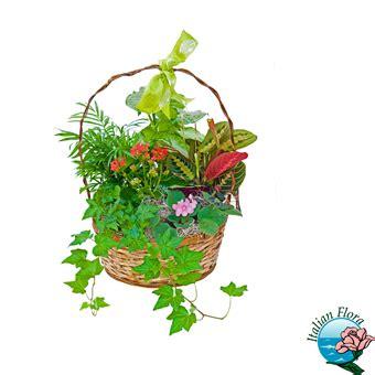 recapitare fiori comprare fiori e piante on line recapitare fiori con