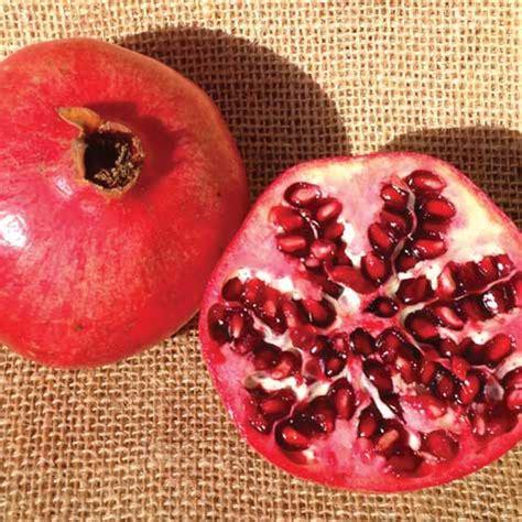 Pomegranate Shelf by Farm Fresh To You Storage Tips