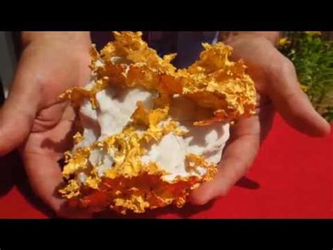 gold nugget found in california backyard giant 6 pound gold nugget found in california sells for