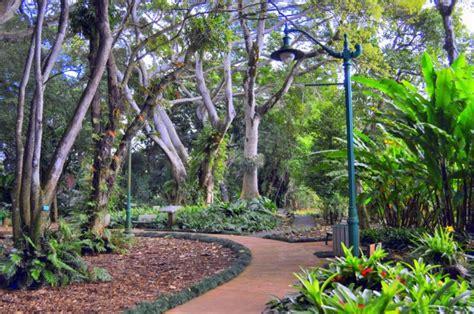 Hawaii S Wahiawa Botanical Garden Will Make You Feel Like Wahiawa Botanical Garden